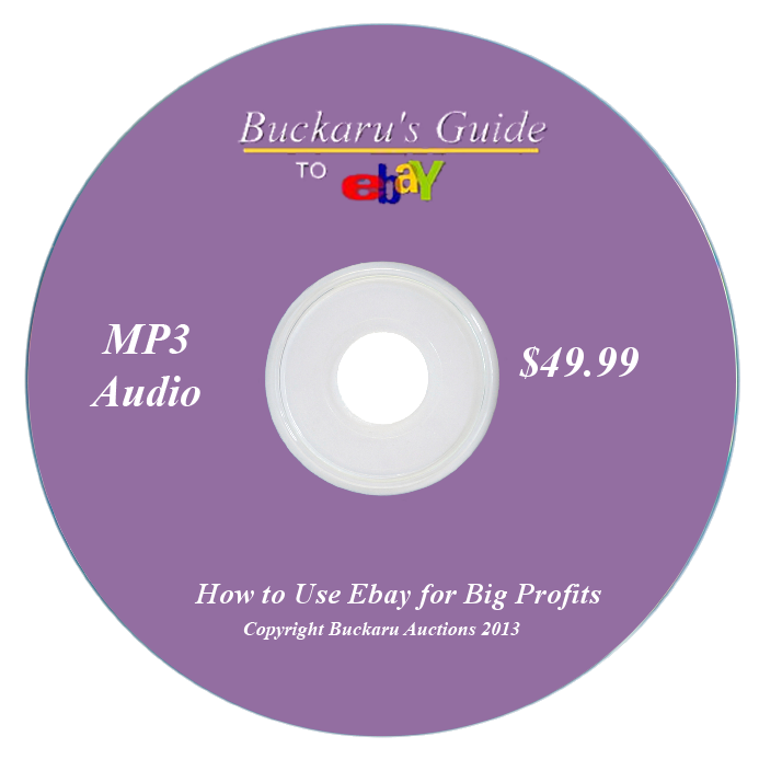 How_to_use_Ebay_for_big_profits